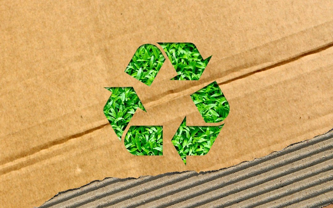 The Ultimate Guide to Eco-Friendly Packaging